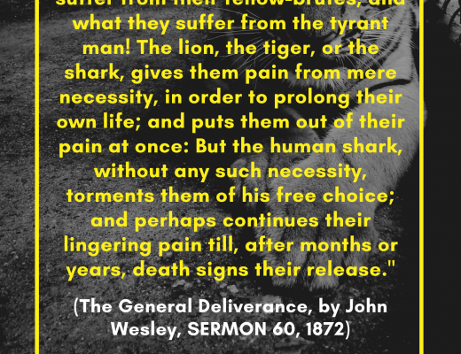 (The General Deliverance, by John Wesley, SERMON 60, 1872)
